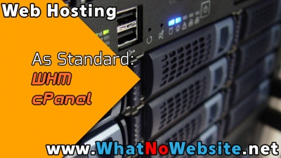 What No Website - Web Hosting